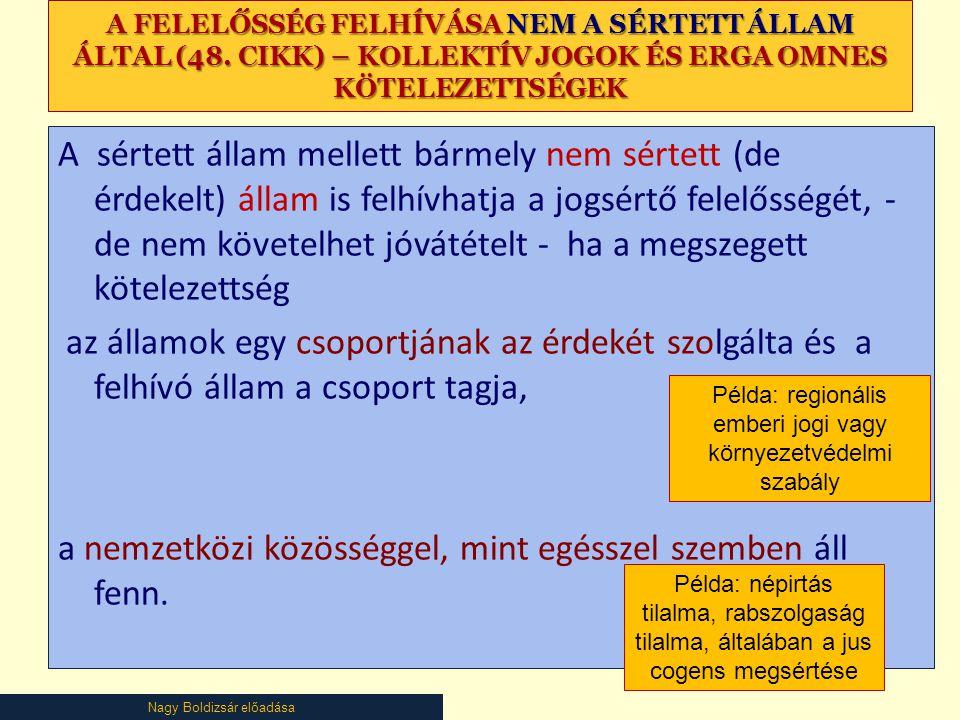 Nagy Boldizsár előadása A FELELŐSSÉG FELHÍVÁSA NEM A SÉRTETT ÁLLAM ÁLTAL (48.