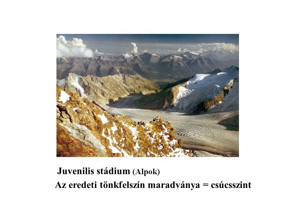 Kormeghatározás hiánya Éghajlat hatásának alábecslése Kőzetminőség csak a részletekben érvényesül Himalája A ciklus megszakítása: tönklépcsők