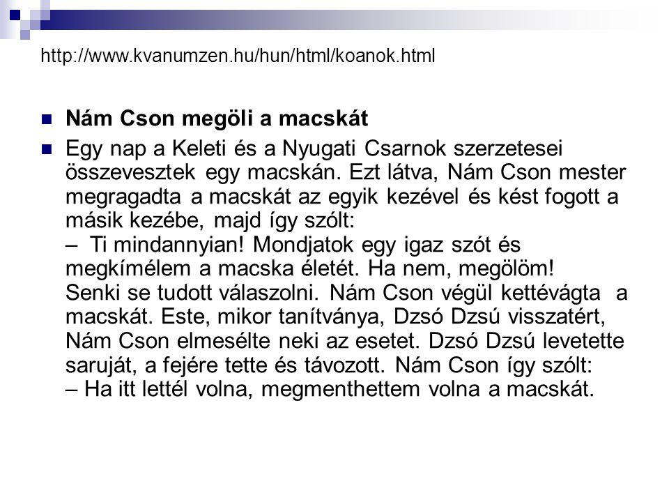 http://www.kvanumzen.hu/hun/html/koanok.html Nám Cson megöli a macskát Egy nap a Keleti és a Nyugati Csarnok szerzetesei összevesztek egy macskán.
