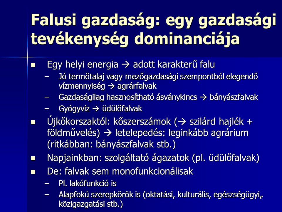 8 Városi gazdaság: többféle szerepkör Helyi helyett/mellett (magasabb rendű) helyzeti energia  tér kitüntetett pontjain: városok (pl.