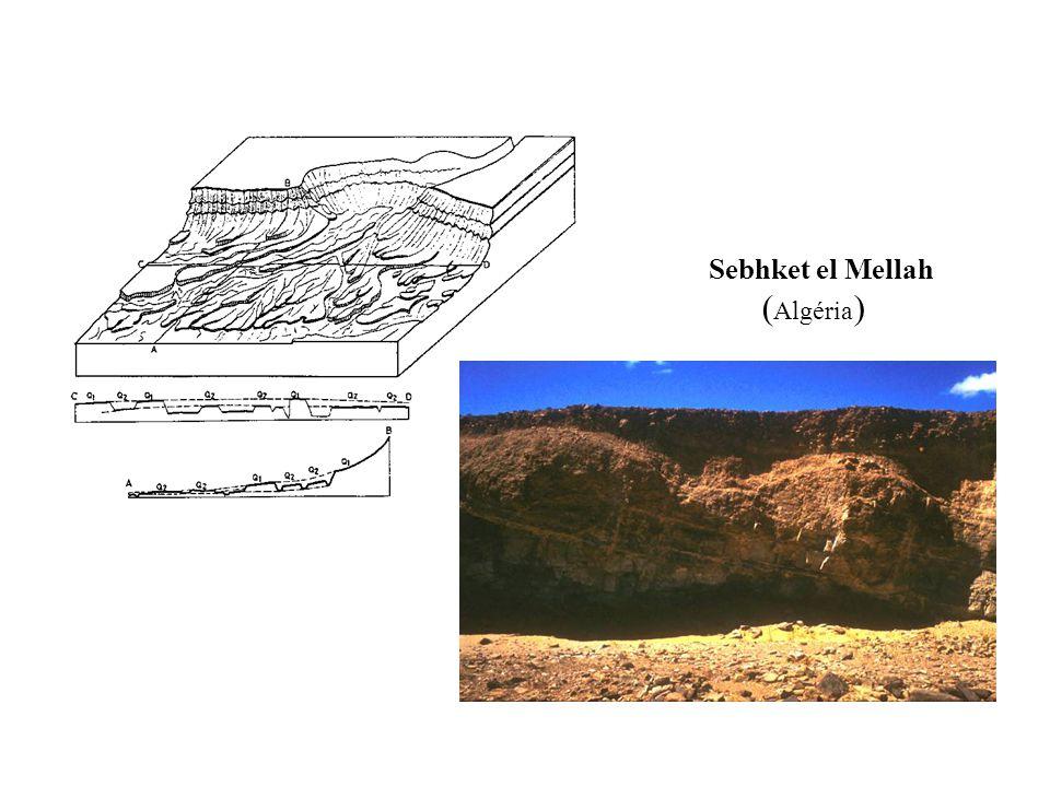 Sebhket el Mellah ( Algéria )