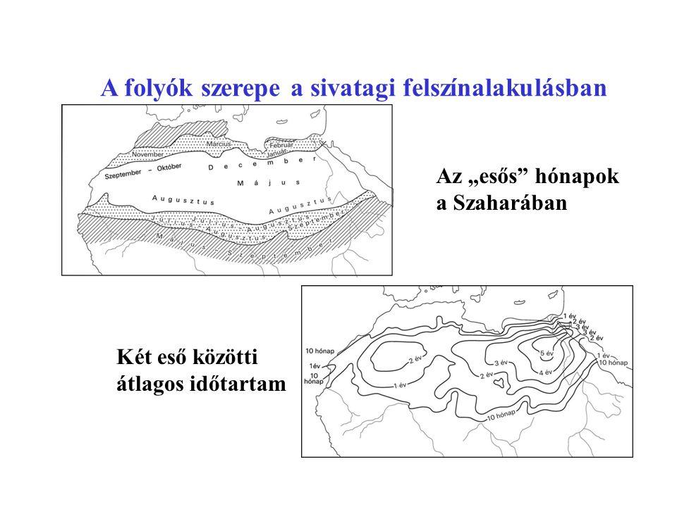 A folyók szakaszos működése:időben térben Mya-vádi vízhozama