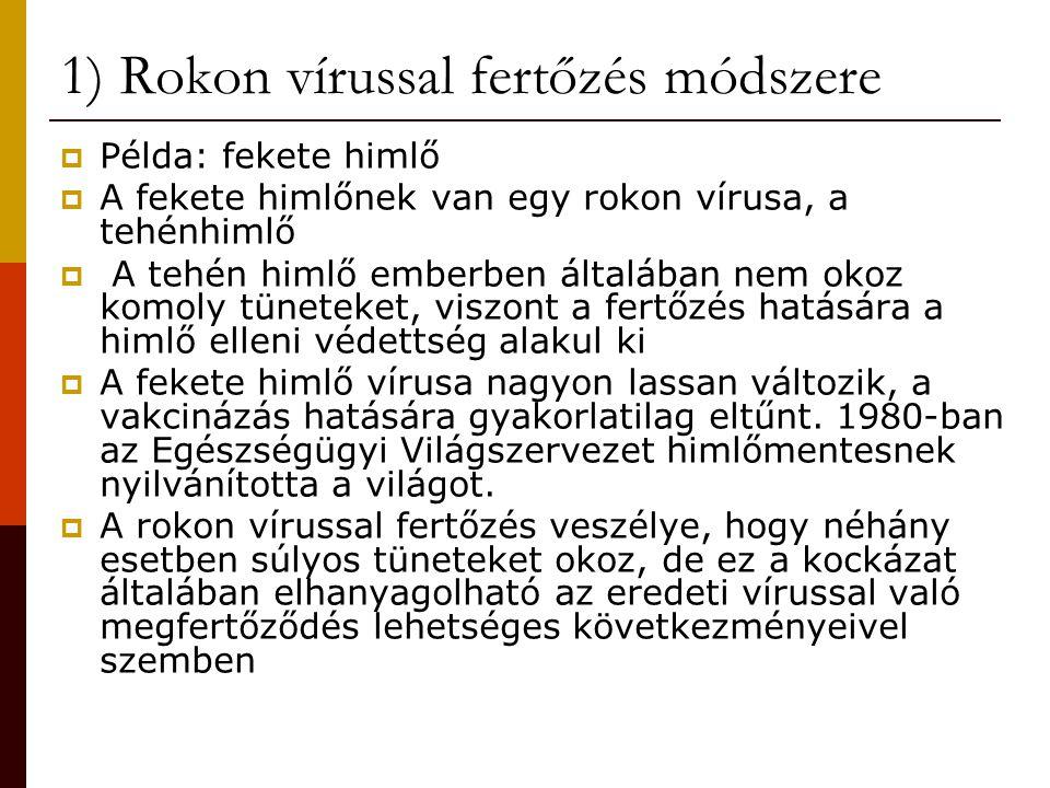 1) Rokon vírussal fertőzés módszere  Példa: fekete himlő  A fekete himlőnek van egy rokon vírusa, a tehénhimlő  A tehén himlő emberben általában ne
