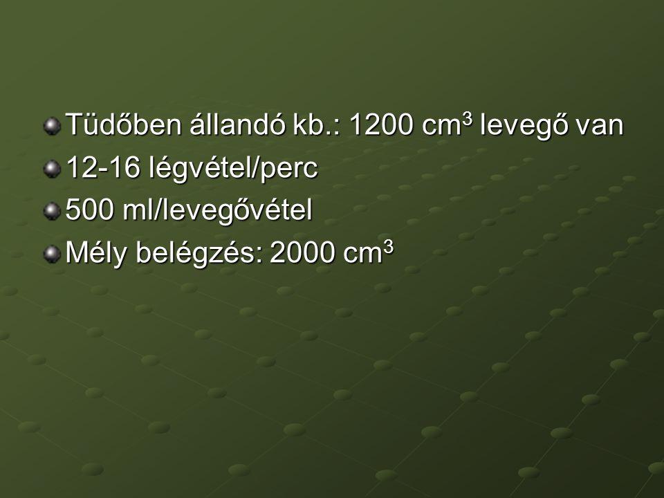 Tüdőben állandó kb.: 1200 cm 3 levegő van 12-16 légvétel/perc 500 ml/levegővétel Mély belégzés: 2000 cm 3