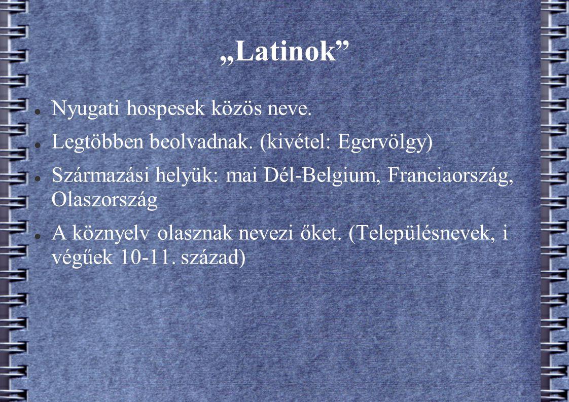 """""""Latinok"""" Nyugati hospesek közös neve. Legtöbben beolvadnak. (kivétel: Egervölgy) Származási helyük: mai Dél-Belgium, Franciaország, Olaszország A köz"""