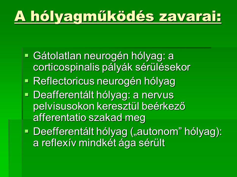 """A hólyagműködés zavarai:  Gátolatlan neurogén hólyag: a corticospinalis pályák sérülésekor  Reflectoricus neurogén hólyag  Deafferentált hólyag: a nervus pelvisusokon keresztül beérkező afferentatio szakad meg  Deefferentált hólyag (""""autonom hólyag): a reflexív mindkét ága sérült"""