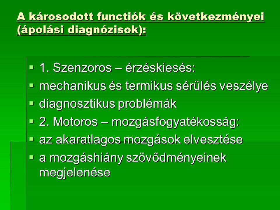 A károsodott functiók és következményei (ápolási diagnózisok):  1. Szenzoros – érzéskiesés:  mechanikus és termikus sérülés veszélye  diagnosztikus