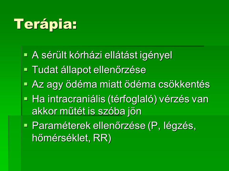 Terápia:  A sérült kórházi ellátást igényel  Tudat állapot ellenőrzése  Az agy ödéma miatt ödéma csökkentés  Ha intracraniális (térfoglaló) vérzés van akkor műtét is szóba jön  Paraméterek ellenőrzése (P, légzés, hőmérséklet, RR)