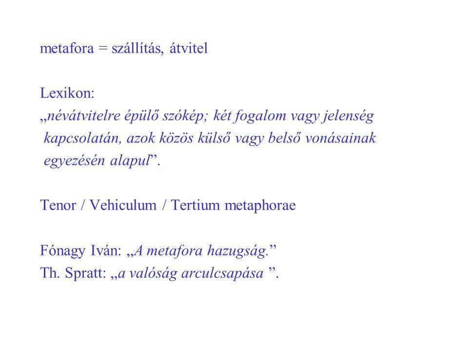 """metafora = szállítás, átvitel Lexikon: """"névátvitelre épülő szókép; két fogalom vagy jelenség kapcsolatán, azok közös külső vagy belső vonásainak egyez"""