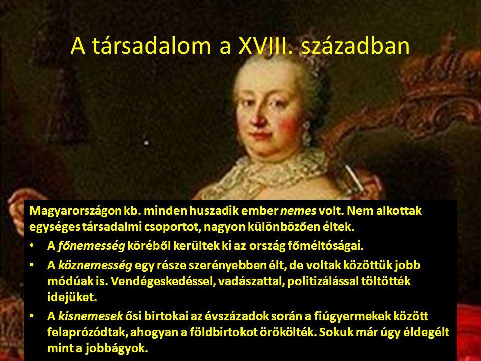 A társadalom a XVIII. században Magyarországon kb. minden huszadik ember nemes volt. Nem alkottak egységes társadalmi csoportot, nagyon különbözően él