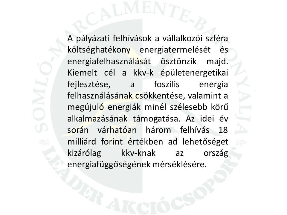A pályázati felhívások a vállalkozói szféra költséghatékony energiatermelését és energiafelhasználását ösztönzik majd.