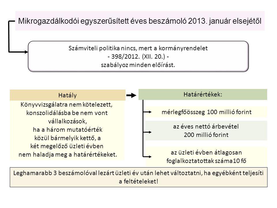 Mikrogazdálkodói egyszerűsített éves beszámoló 2013. január elsejétől Könyvvizsgálatra nem kötelezett, konszolidálásba be nem vont vállalkozások, ha a