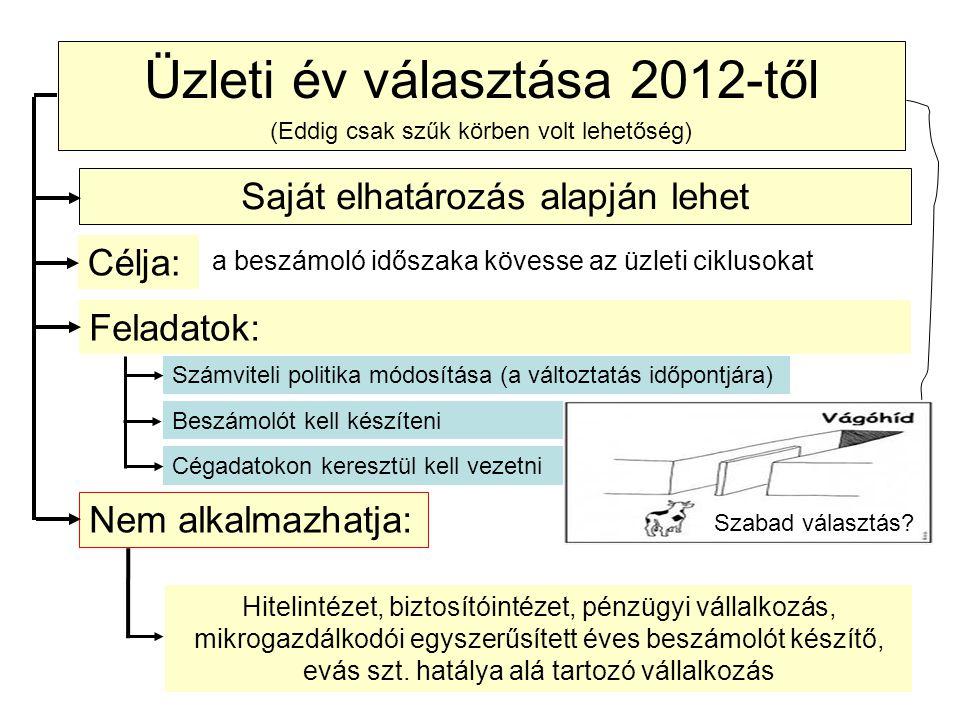 Üzleti év választása 2012-től (Eddig csak szűk körben volt lehetőség) Hitelintézet, biztosítóintézet, pénzügyi vállalkozás, mikrogazdálkodói egyszerűs