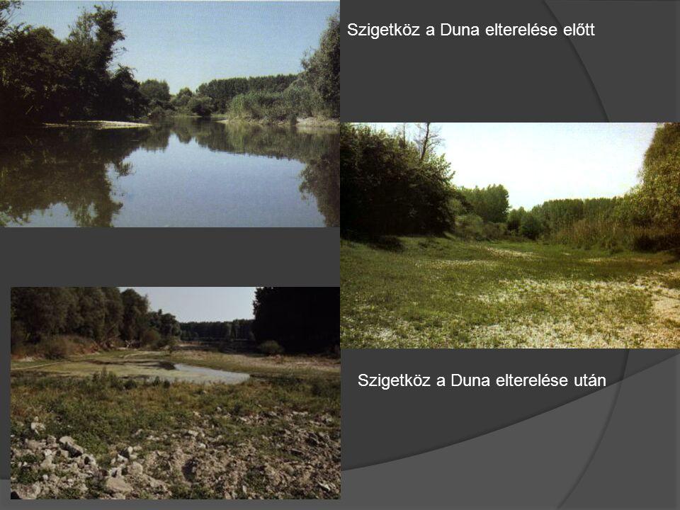 Szigetköz a Duna elterelése előtt Szigetköz a Duna elterelése után