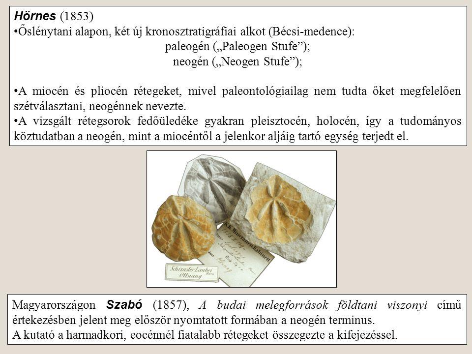 """Hörnes (1853) Őslénytani alapon, két új kronosztratigráfiai alkot (Bécsi-medence): paleogén (""""Paleogen Stufe""""); neogén (""""Neogen Stufe""""); A miocén és p"""