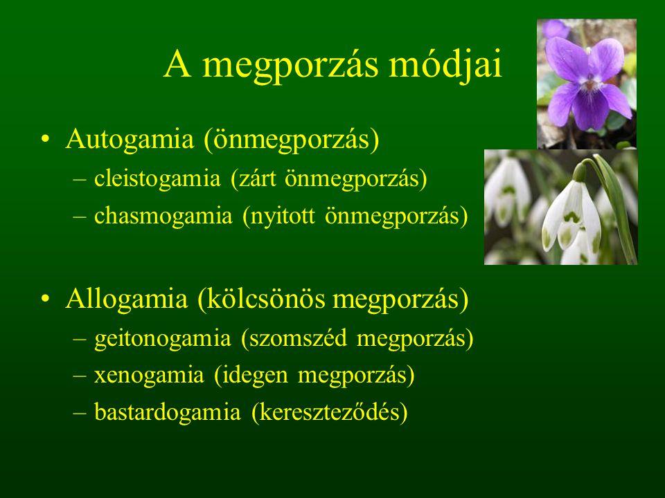 A megporzás módjai Autogamia (önmegporzás) –cleistogamia (zárt önmegporzás) –chasmogamia (nyitott önmegporzás) Allogamia (kölcsönös megporzás) –geiton