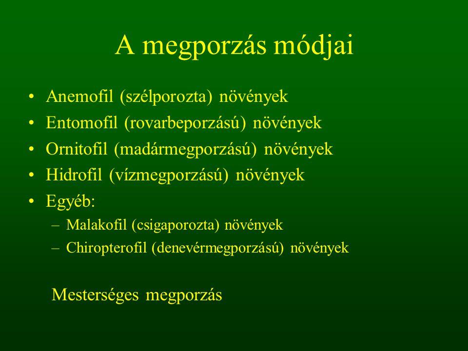 A megporzás módjai Anemofil (szélporozta) növények Entomofil (rovarbeporzású) növények Ornitofil (madármegporzású) növények Hidrofil (vízmegporzású) n