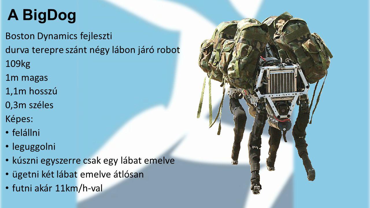 A BigDog Boston Dynamics fejleszti durva terepre szánt négy lábon járó robot 109kg 1m magas 1,1m hosszú 0,3m széles Képes: felállni leguggolni kúszni