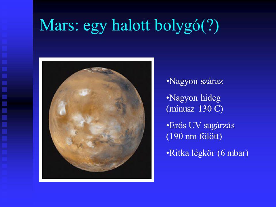 Mars: egy halott bolygó(?) Nagyon száraz Nagyon hideg (mínusz 130 C) Erős UV sugárzás (190 nm fölött) Ritka légkör (6 mbar)