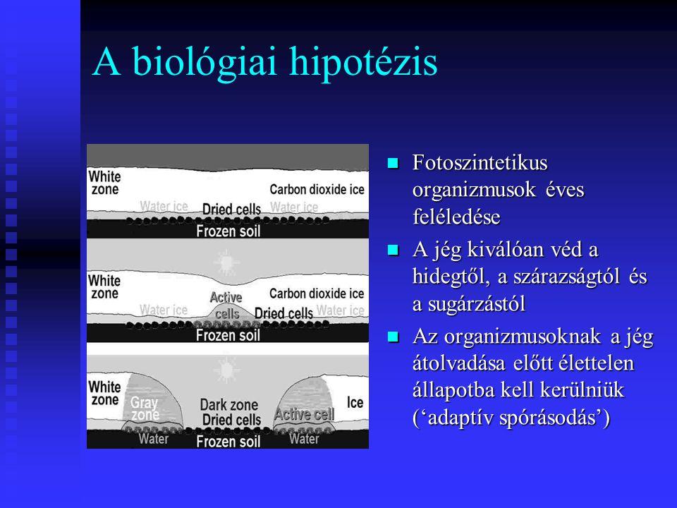 A biológiai hipotézis Fotoszintetikus organizmusok éves feléledése A jég kiválóan véd a hidegtől, a szárazságtól és a sugárzástól Az organizmusoknak a