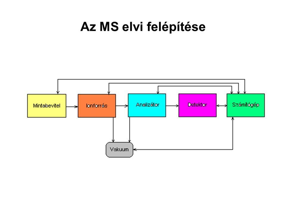 Az MS elvi felépítése