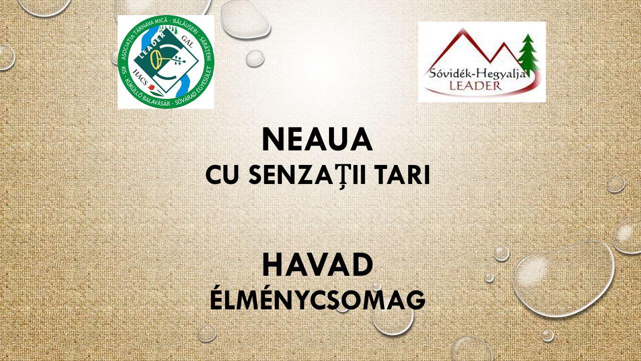 NEAUA HAVAD