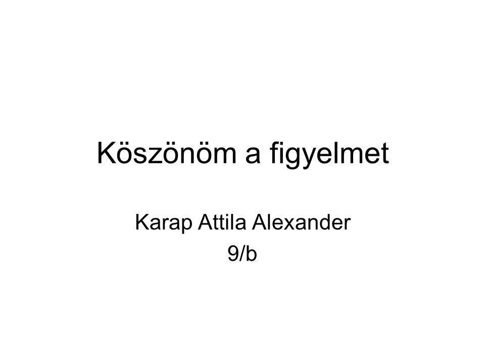 Köszönöm a figyelmet Karap Attila Alexander 9/b