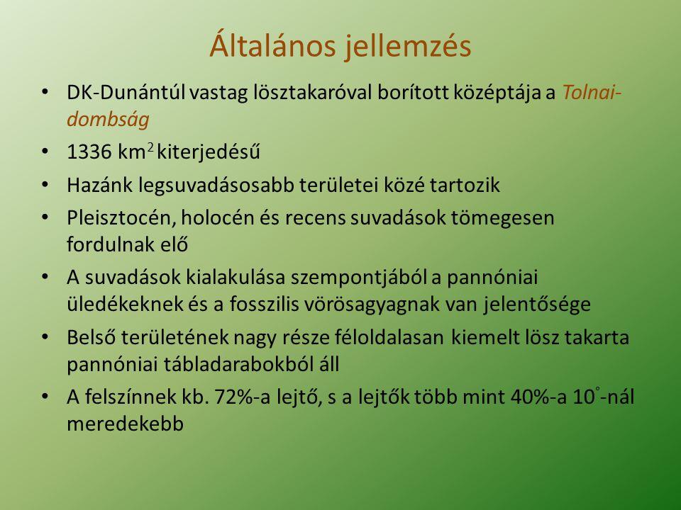 Általános jellemzés DK-Dunántúl vastag lösztakaróval borított középtája a Tolnai- dombság 1336 km 2 kiterjedésű Hazánk legsuvadásosabb területei közé