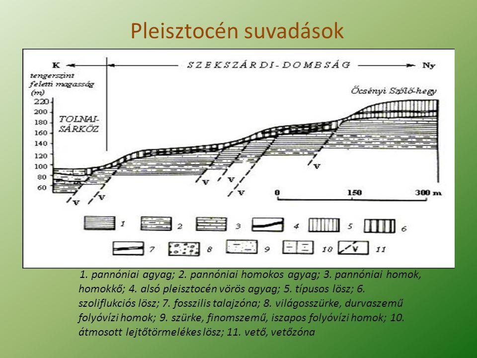 Pleisztocén suvadások 1. pannóniai agyag; 2. pannóniai homokos agyag; 3. pannóniai homok, homokkő; 4. alsó pleisztocén vörös agyag; 5. típusos lösz; 6