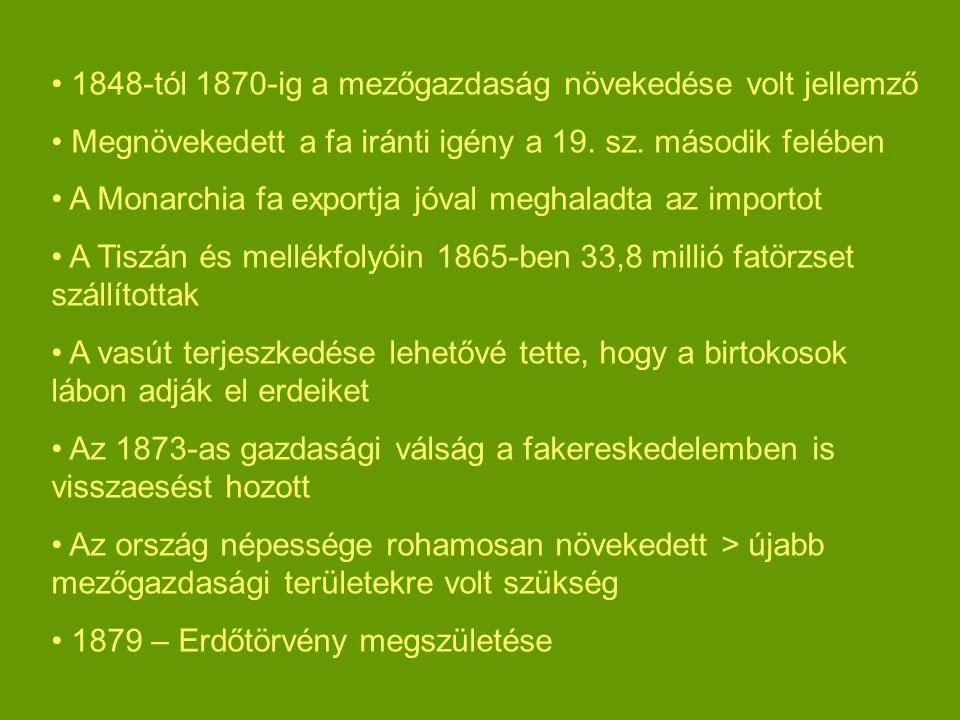1848-tól 1870-ig a mezőgazdaság növekedése volt jellemző Megnövekedett a fa iránti igény a 19. sz. második felében A Monarchia fa exportja jóval megha