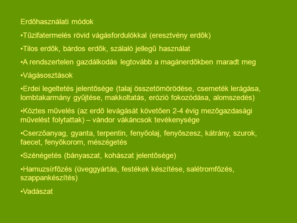 Erdőhasználati módok Tűzifatermelés rövid vágásfordulókkal (eresztvény erdők) Tilos erdők, bárdos erdők, szálaló jellegű használat A rendszertelen gaz