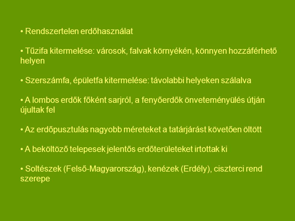 Rendszertelen erdőhasználat Tűzifa kitermelése: városok, falvak környékén, könnyen hozzáférhető helyen Szerszámfa, épületfa kitermelése: távolabbi hel