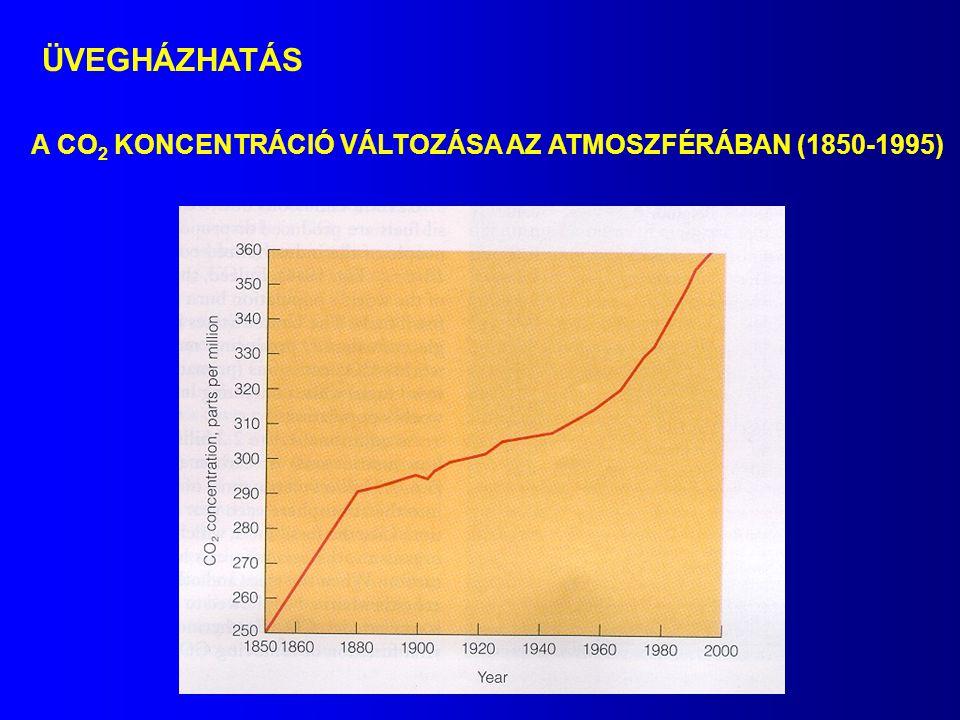 A CO 2 KONCENTRÁCIÓ VÁLTOZÁSA AZ ATMOSZFÉRÁBAN (1850-1995) ÜVEGHÁZHATÁS
