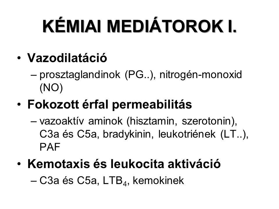 KÉMIAI MEDIÁTOROK I. Vazodilatáció –prosztaglandinok (PG..), nitrogén-monoxid (NO) Fokozott érfal permeabilitás –vazoaktív aminok (hisztamin, szeroton