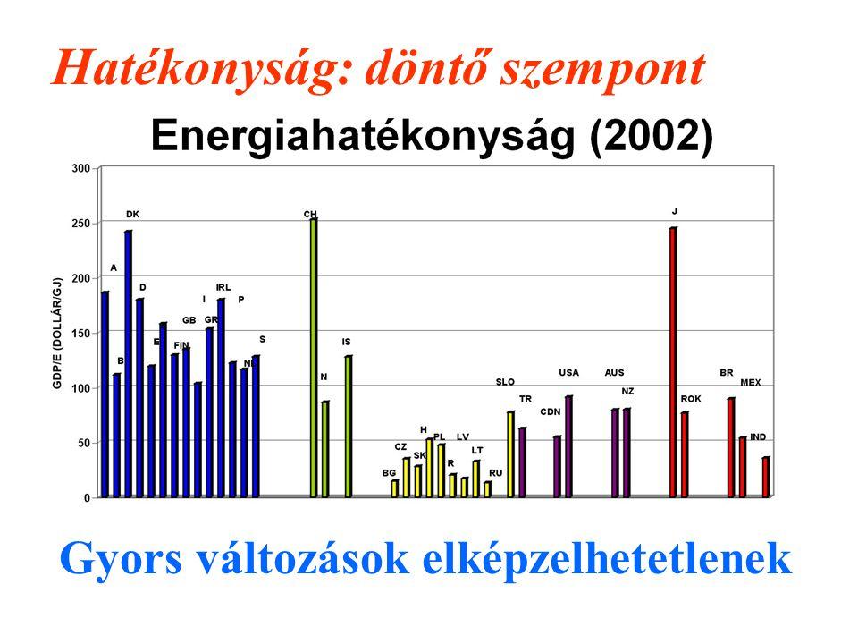 Hatékonyság: döntő szempont Gyors változások elképzelhetetlenek