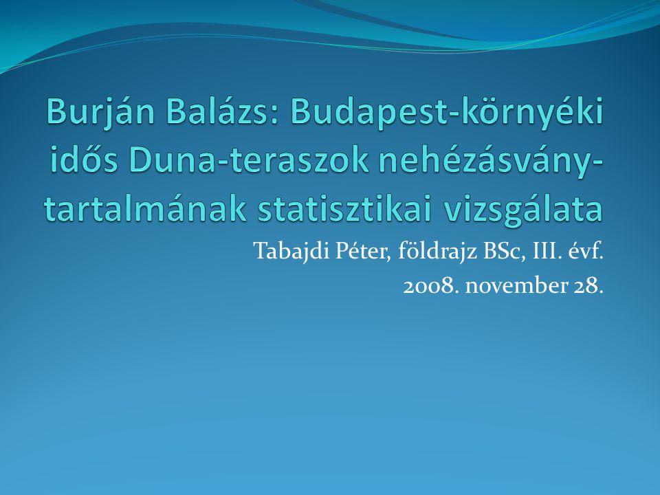 Tabajdi Péter, földrajz BSc, III. évf. 2008. november 28.