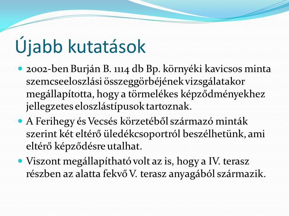 Újabb kutatások 2002-ben Burján B. 1114 db Bp.