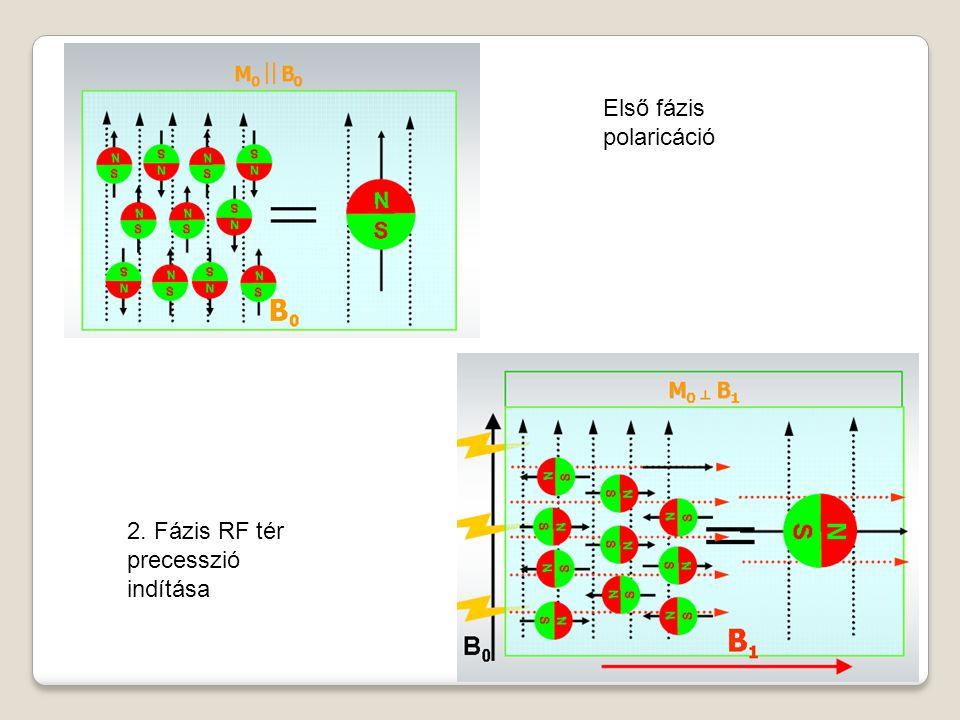 Első fázis polaricáció 2. Fázis RF tér precesszió indítása