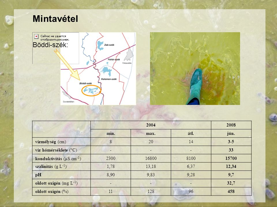 Mintavétel 20042008 min.max.átl.jún. vízmélység (cm)820143-5 víz hőmérséklete (°C)---33 konduktivitás (  S cm -1 ) 230016800810015700 szalinitás (g L