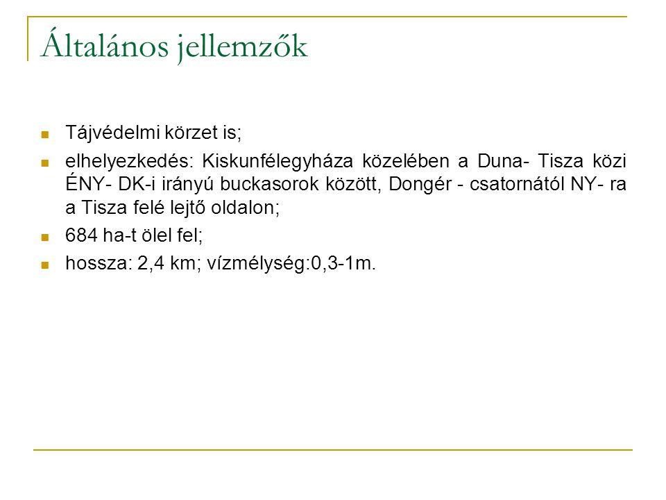 Általános jellemzők Tájvédelmi körzet is; elhelyezkedés: Kiskunfélegyháza közelében a Duna- Tisza közi ÉNY- DK-i irányú buckasorok között, Dongér - csatornától NY- ra a Tisza felé lejtő oldalon; 684 ha-t ölel fel; hossza: 2,4 km; vízmélység:0,3-1m.