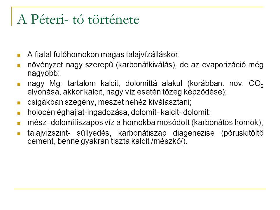 A Péteri- tó története A fiatal futóhomokon magas talajvízálláskor; növényzet nagy szerepű (karbonátkiválás), de az evaporizáció még nagyobb; nagy Mg- tartalom kalcit, dolomittá alakul (korábban: növ.