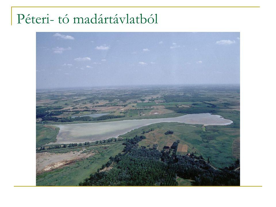 Péteri- tó madártávlatból
