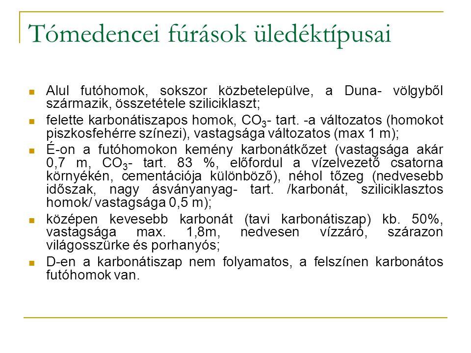 Tómedencei fúrások üledéktípusai Alul futóhomok, sokszor közbetelepülve, a Duna- völgyből származik, összetétele sziliciklaszt; felette karbonátiszapos homok, CO 3 - tart.