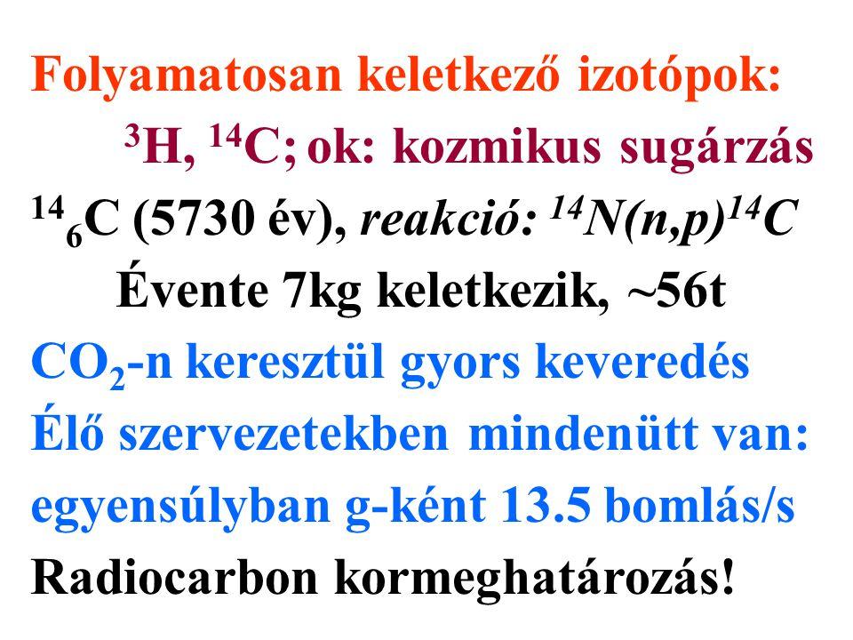 Folyamatosan keletkező izotópok: 3 H, 14 C; ok: kozmikus sugárzás 14 6 C (5730 év), reakció: 14 N(n,p) 14 C Évente 7kg keletkezik, ~56t CO 2 -n keresz