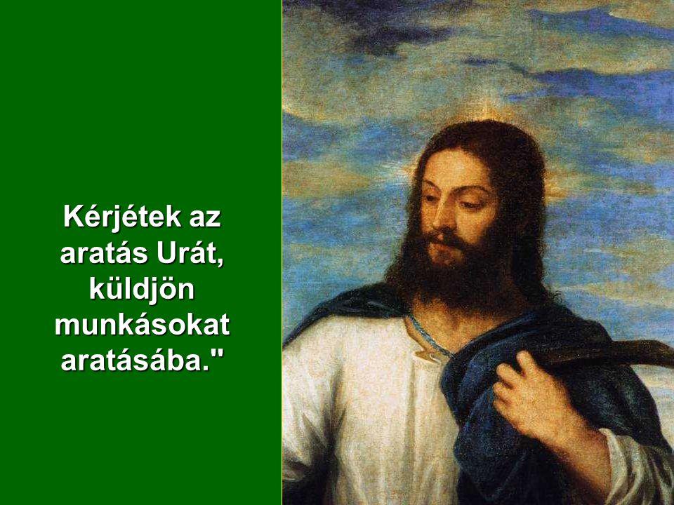 Erre így szólt tanítványaihoz:,,Az aratni való sok, de a munkás kevés.