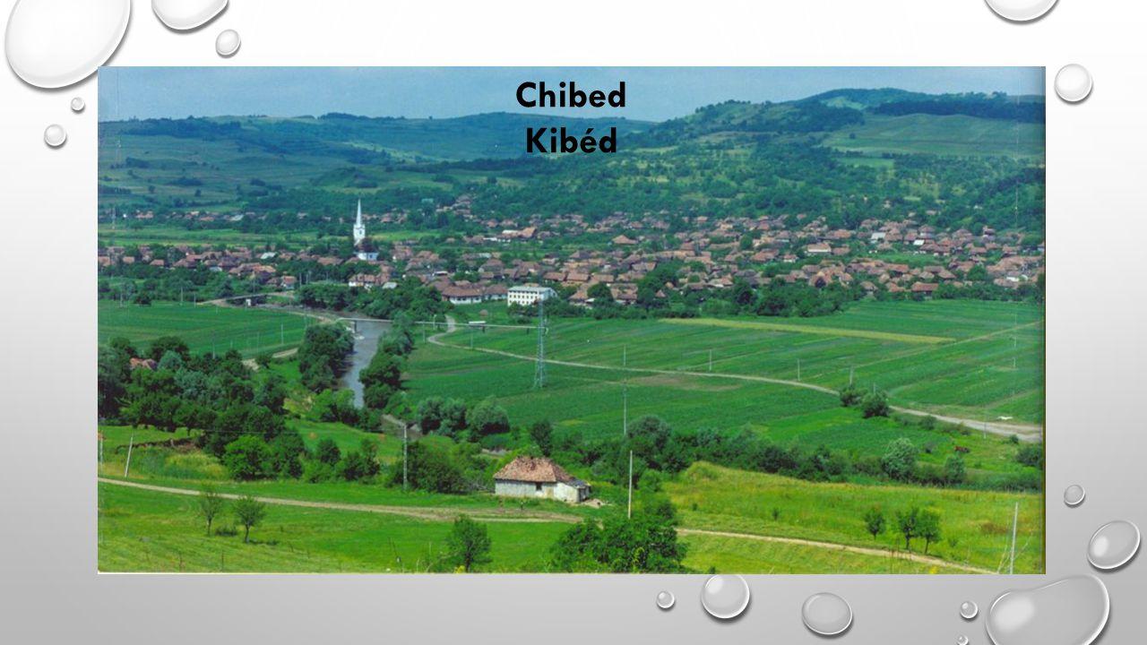 Chibed Kibéd