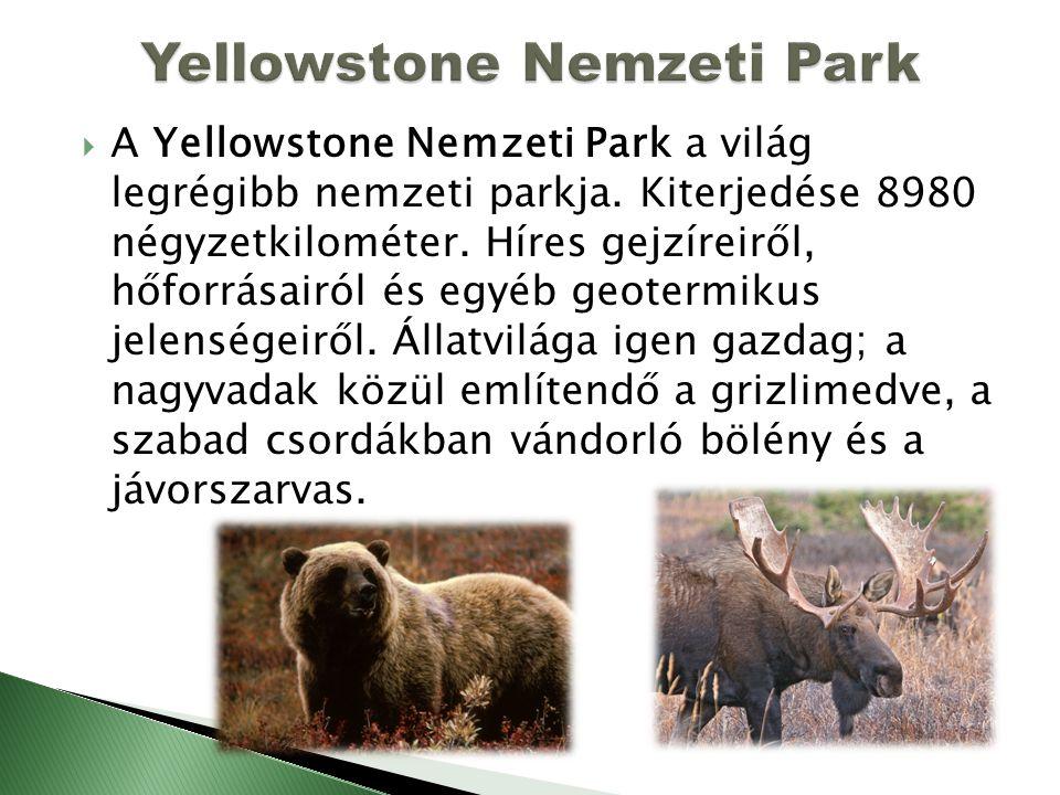  A Yellowstone Nemzeti Park a világ legrégibb nemzeti parkja. Kiterjedése 8980 négyzetkilométer. Híres gejzíreiről, hőforrásairól és egyéb geotermiku