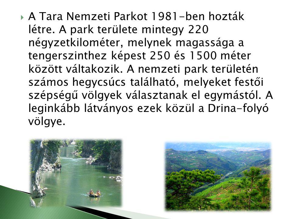  A Tara Nemzeti Parkot 1981-ben hozták létre. A park területe mintegy 220 négyzetkilométer, melynek magassága a tengerszinthez képest 250 és 1500 mét