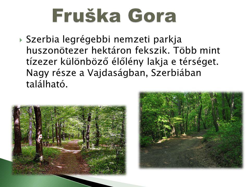  Szerbia legrégebbi nemzeti parkja huszonötezer hektáron fekszik. Több mint tízezer különböző élőlény lakja e térséget. Nagy része a Vajdaságban, Sze