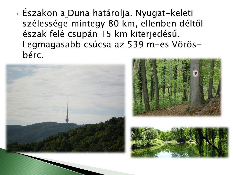  Északon a Duna határolja. Nyugat-keleti szélessége mintegy 80 km, ellenben déltől észak felé csupán 15 km kiterjedésű. Legmagasabb csúcsa az 539 m-e